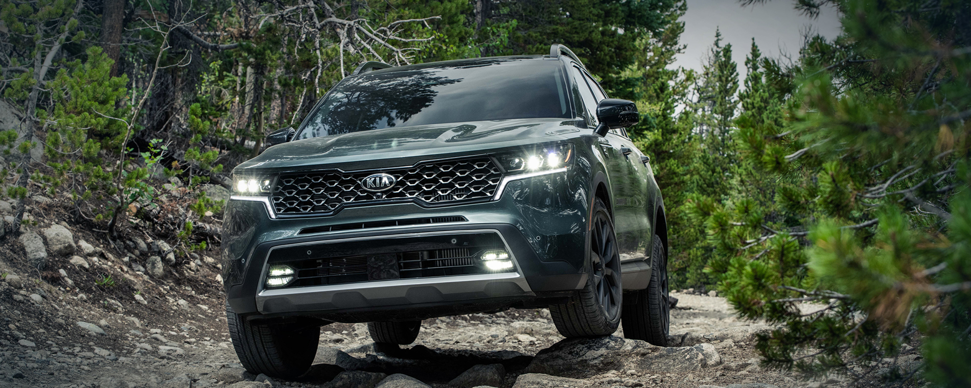 2019 Kia Sorento Interior: Cable Dahmer Kia Of